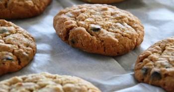 עוגיות חמאת בוטנים מהגיהנום עם שוקולד צ'יפס