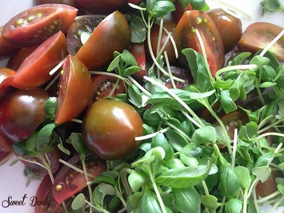 סלט עגבניות עם נבטי בזיליקום