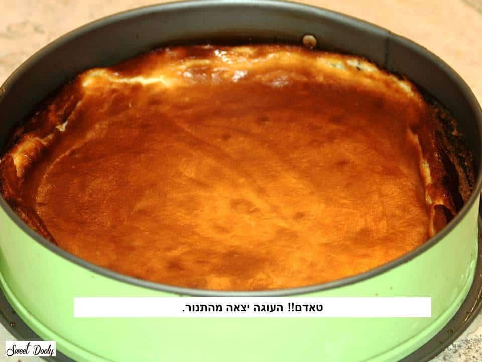 עוגת גבינה1 שושנה