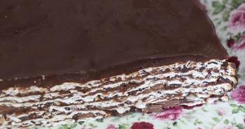 עוגת מצות עם שוקולד העוגה של פסח