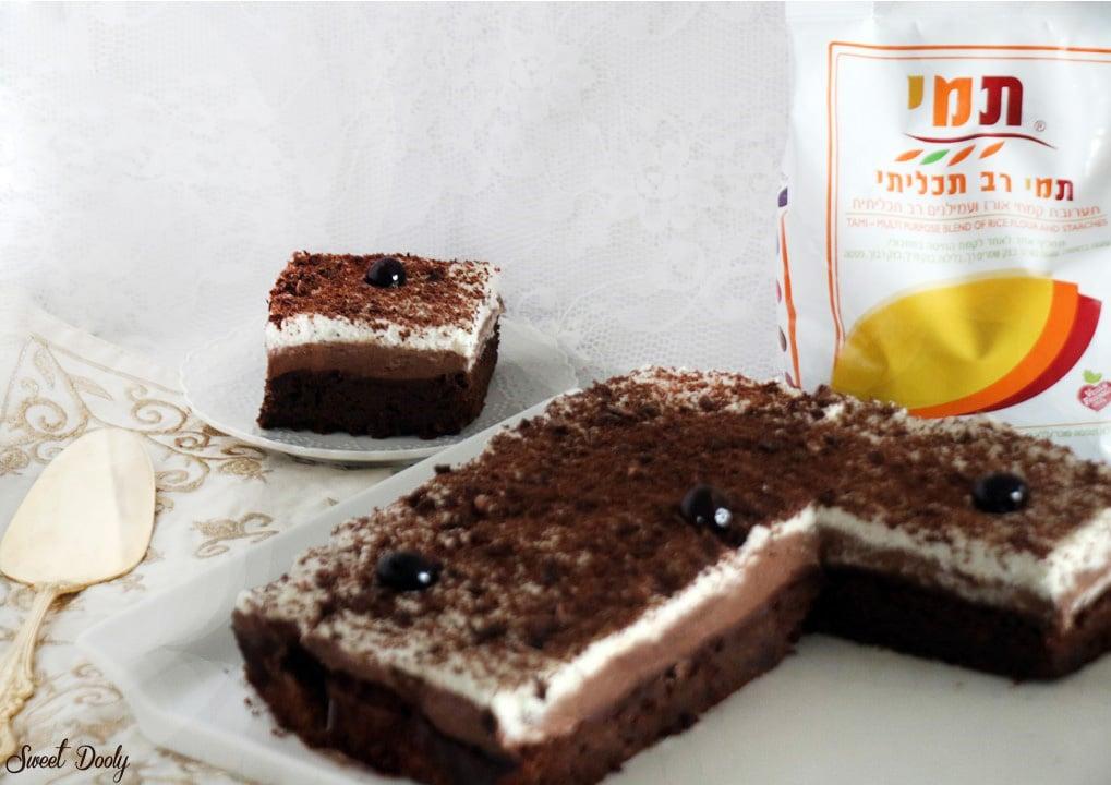 עוגת שוקולד חגיגית לפסח ללא גלוטן