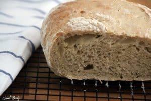 לחם ללא לישה טבעוני וטעים