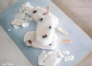 מתכון לגלידה וניל עם דובדבנים בייתית