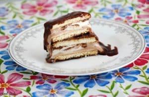 קסטה גלידה בייתית שוקו וניל